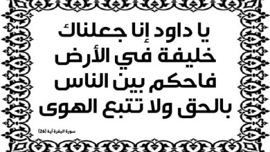 Photo of سورة البقرة: ارتباط الاسم بالموضوع