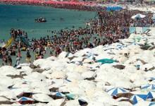شاطىء مصر