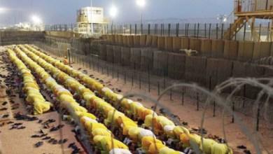 Photo of معسكر بوكا، سجن أبو غريب، وصعود التطرف في العراق