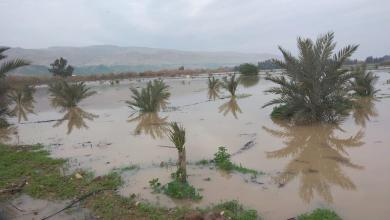 "Photo of ""المياه"": منسوب نهر الأردن المرتفع يسير نحو دير علا وداميه جنوبا"