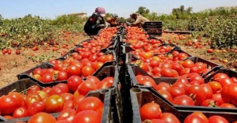 Photo of الاحتلال  يمنع تصدير المنتجات الزراعية الفلسطينية عبر الأردن