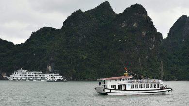 Photo of سياحة محلية في فيتنام مع تخفيف القيود على السفر ضمن البلاد