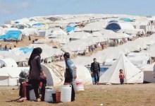 Photo of الفراية: معدل الاستجابة لاحتياجات الأردن للأزمة السورية لم تتجاوز 4%