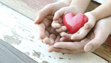 اللطف والكرم يفيدان صاحبهما- عاجلاً أم آجلاً