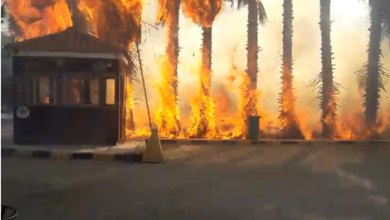 Photo of الدفاع المدني يتعامل مع حريق شب داخل السوق الحرفي في جرش (فيديو)