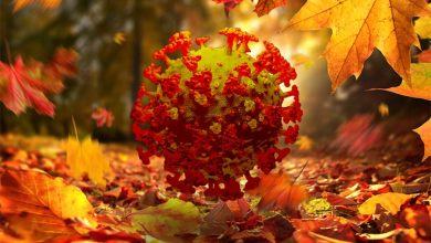 كورونا والخريف