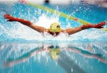"Photo of 12 ميدالية جديدة لـ""السباحة"" في البطولة العربية"