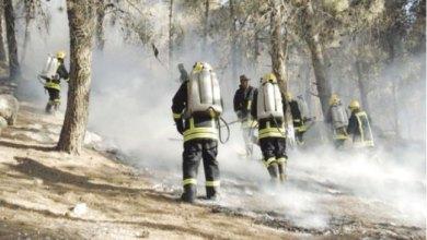 Photo of جرش: الحرائق ما تزال تحصد الأشجار المعمرة في الغابات