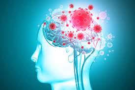 الفيروس قد يهاجم الدماغ أيضا.