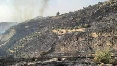 Photo of إربد: كوادر الدفاع المدني تحاول السيطرة على حريق ضخم بلوائي الطيبة والكورة ( فيديو)
