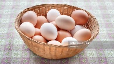 Photo of ما هو الفرق بين البيض ذي القشرة البنية والقشرة البيضاء؟