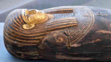 Photo of مصر تعلن اكتشاف مئة تابوت فرعوني في منطقة سقارة – صور