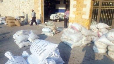 Photo of عجلون: سعر صفيحة الزيت تنخفض إلى 70 دينارا.. ومزارعون يعتبرونه منصفا