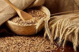 Photo of ما هي أعراض حساسية القمح وما علاقتها بالداء البطني؟