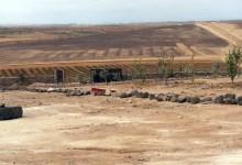 Photo of مشروع لزراعة 10 آلاف شجرة دراق ومشمش بالزرقاء