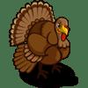 Turkey Se vende por: 125 Tamaño: 1x1