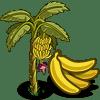 Banana Tree Regalo Monedas que produce: 56 Se vende por: 32