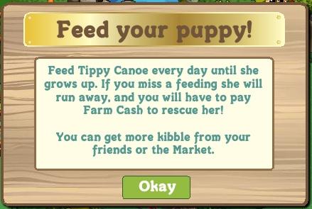 Alimenta a tu perro