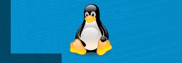 Comandos imprescindibles de Linux (Parte 1)