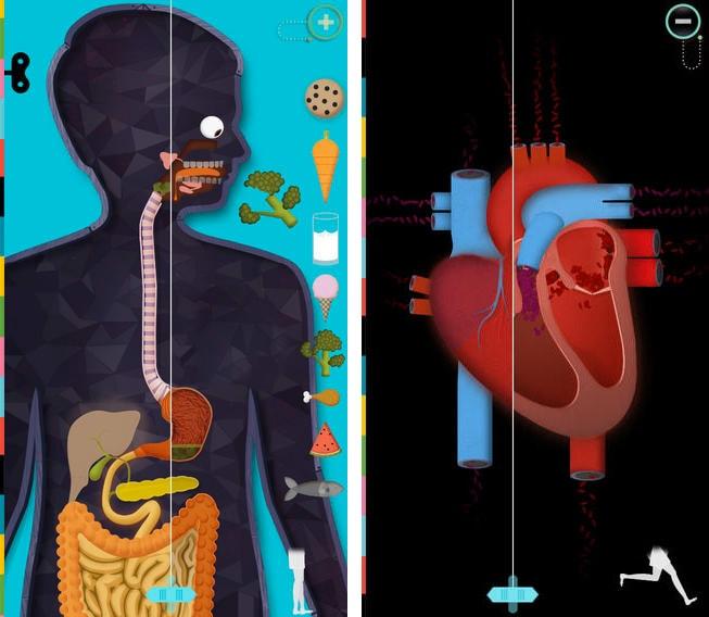 el cuerpo humano app iphone ipad
