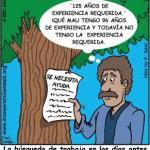 Algunas formas de ganar experiencia en traducción