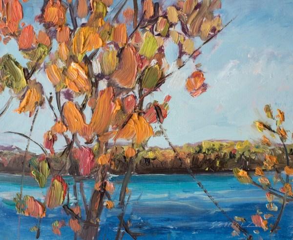 Algonquin Park Rock Lake Splendor Art Centre - Canadian