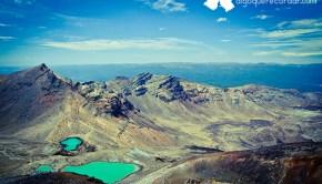 road_trip_Nueva_Zelanda_algo_que_recordar_16