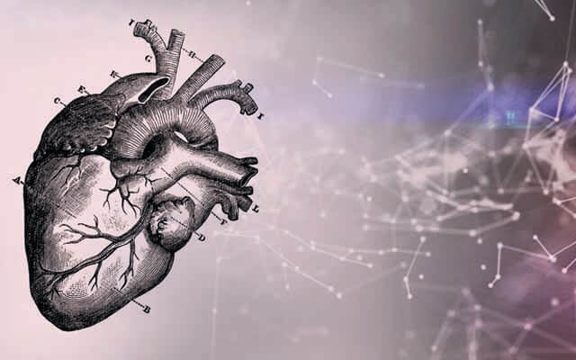 Bay Labs's technology applying artificial intelligence to cardiovascular imaging