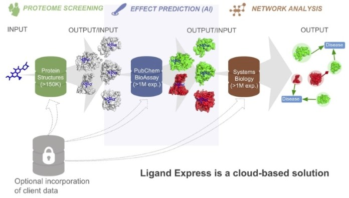 Ligand Express AI driven to develop personalized drugs