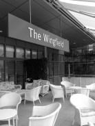 The Wingfield
