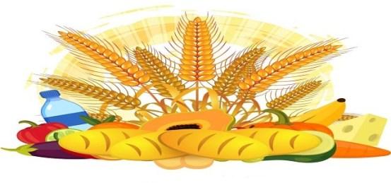 Protein Ingredient Market Υφιστάμενοι κορυφαίοι παίκτες & επερχόμενοι ανταγωνιστές