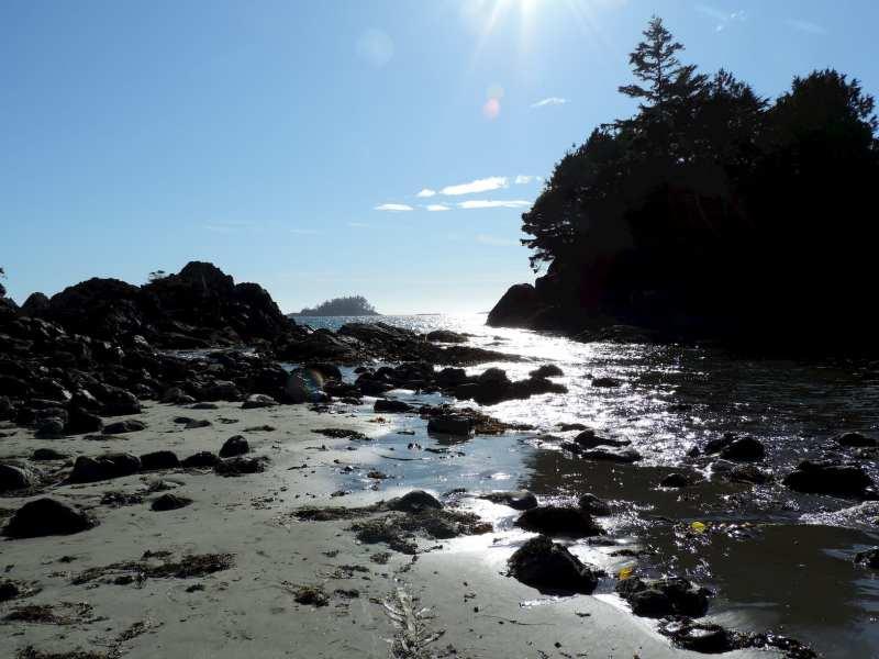 חוף האוקיאנוס השקט בפארק הלאומי נורת רים, ליד העיירה טופינו