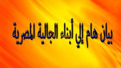 بيان الجالية المصرية