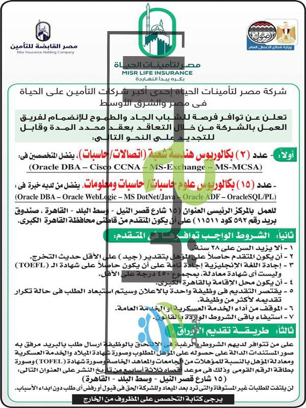 وظائف مصر لتأمينات الحياة