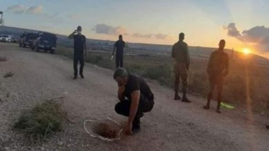 فرار-أسرى-فلسطينيين-عبر-نفق