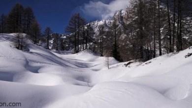 شاهد: إيطالي يغوص في الثلوج - صحيفة هتون الدولية