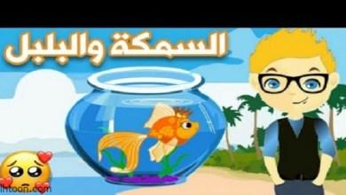 السمكة والبلبل قصة مسلية -صحيفة هتون الدولية