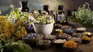 فوائد الأعشاب الطبيعية تعرف عليها -صحيفة هتون الدولية-