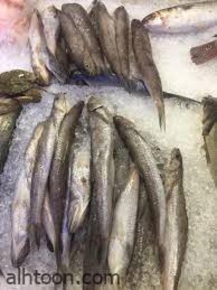 فوائد سمك المكرونة أغنى الأسماك بالفيتامينات -صحيفة هتون الدولية