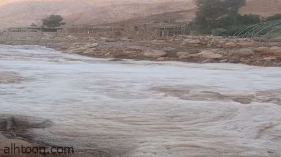 شاهد: لحظة إنقاذ طفل جزائري جرفته السيول - صحيفة هتون الدولية