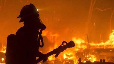 شاهد: النيران تلتهم المنازل في كاليفورنيا - صحيفة هتون الدولية