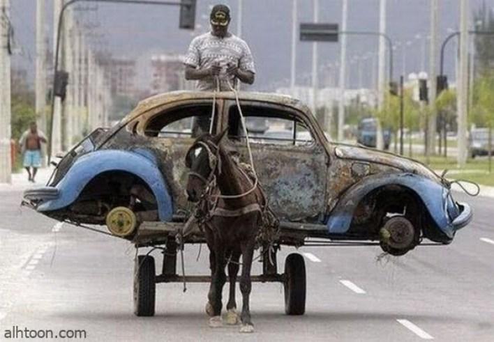 اجمل الصور في العالم المضحكة -صحيفة هتون الدولية