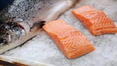 أهم الفوائد الصحية لسمك السلمون -صحيفة هتون الدولية