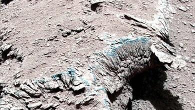 التقاط صورة مذهلة على المريخ - صحيفة هتون الدولية