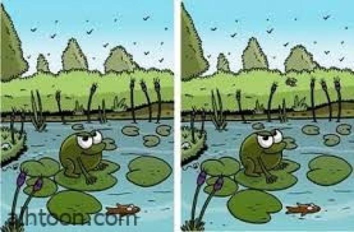لعبة الفرق بين الصورتين -صحيفة هتون الدولية