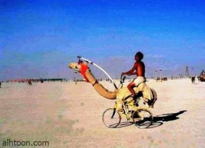 صور مضحكة تفطس من الضحك -صحيفة هتون الدولية