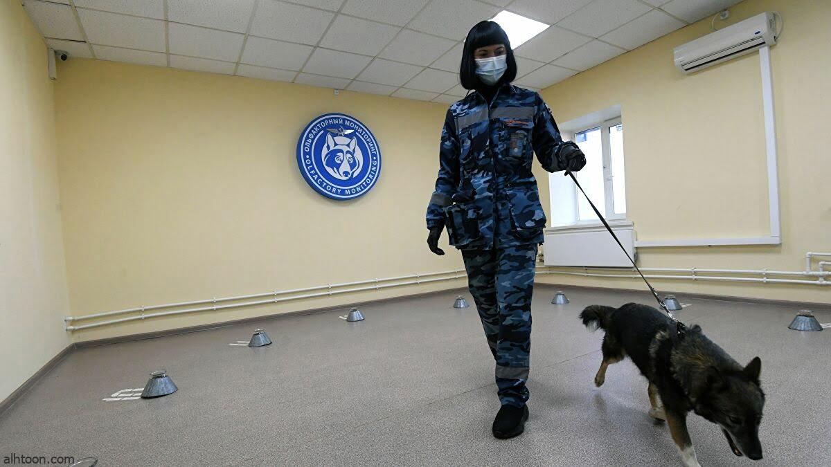 إجلاء كلاب بوليسية من مطار كابل - صحيفة هتون الدولية