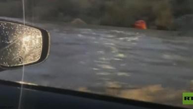 شاهد: سائق يغامر ويقود سيارته وسط الفيضانات - صحيفة هتون الدولية