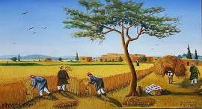 قصة ( يوم الحصاد )
