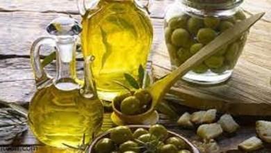 فوائد الزيتون المذهلة -صحيفة هتون الدولية